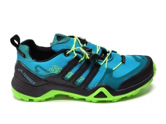 Adidas Terrex SwiftR GTX Blue/Black/Green PS