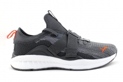 Puma Ignite evoKNIT Lo 2 Grey